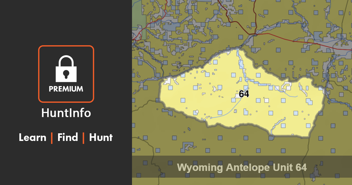 unit 64 I have an opportunity to go hunt elk and deer in unit 64 and 65 this coming fall i know absolutely.